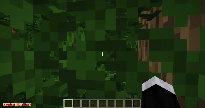 Passable Foliage mod for minecraft 02