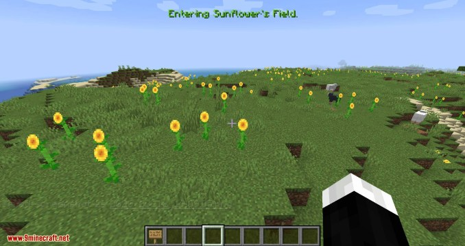 Named Areas mod for minecraft 04
