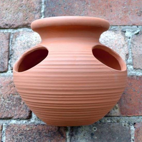 Strawberry Jar Wall Pot  Weston Mill Pottery UK