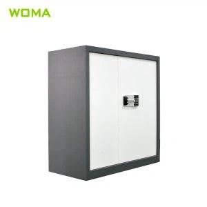 Electronic Storage Cabinet Manufacturer  Supplier