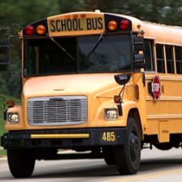 school bus_28401