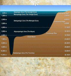 diagram of pressure in the ocean [ 960 x 1300 Pixel ]