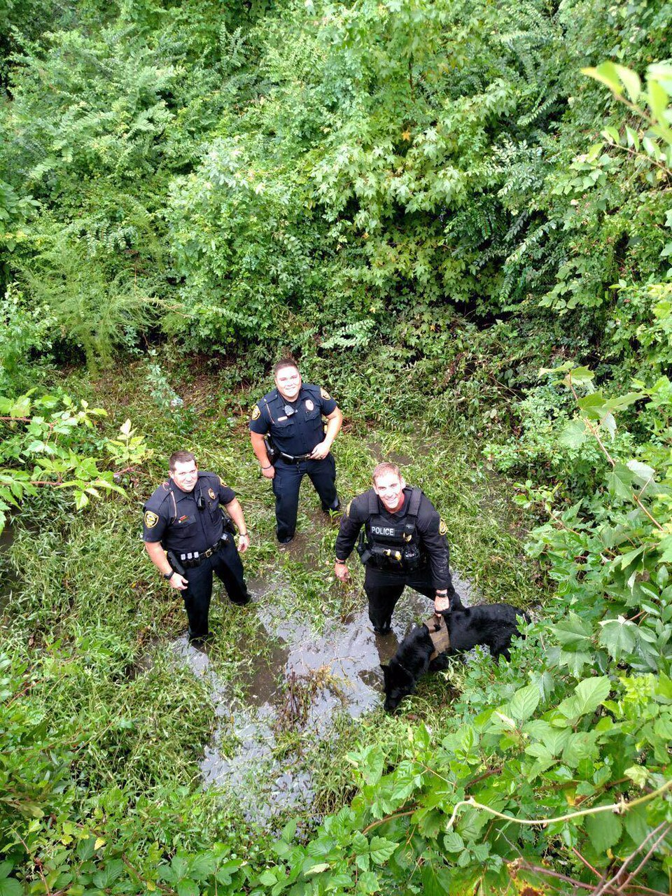 GPD CAPTURES FUGITIVE_267659