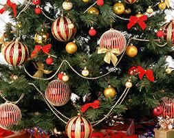 christmas 1_456865