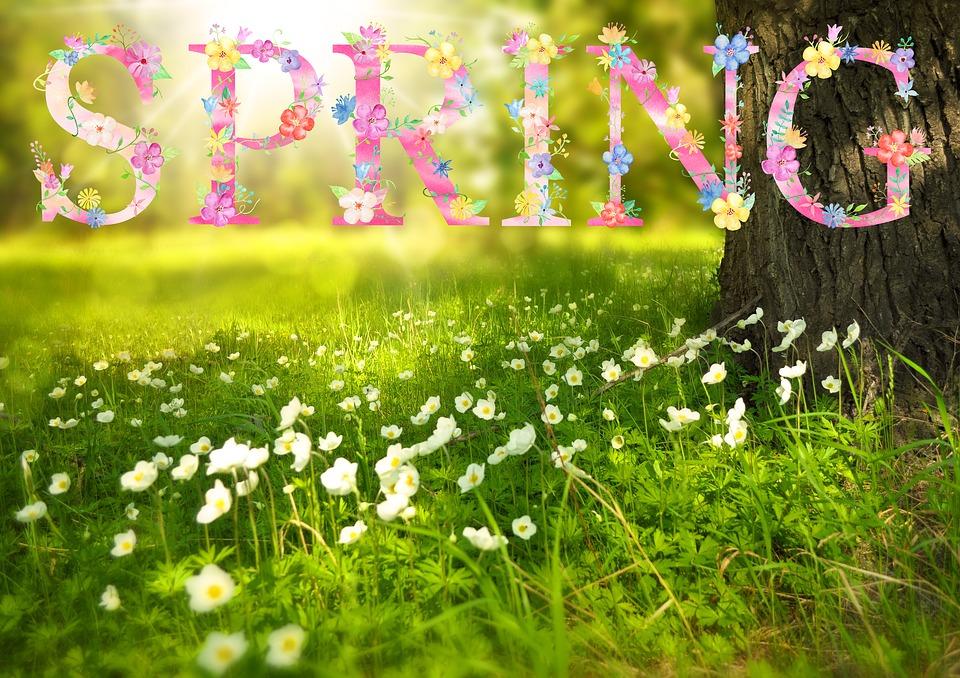 spring-1210194_960_720_370902