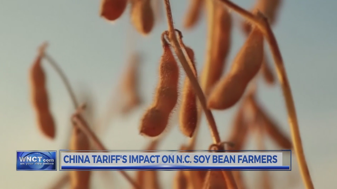 China Tariff Impact Soy Beans