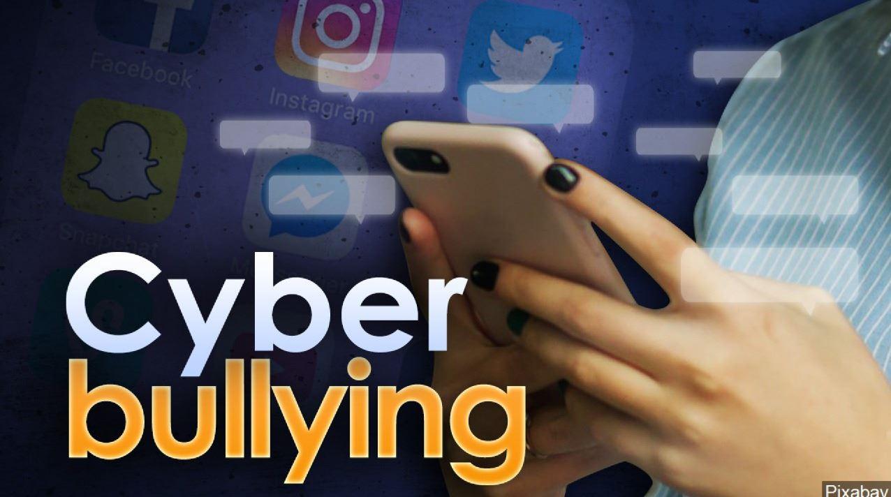 cyber bullying_1549340257884.JPG.jpg