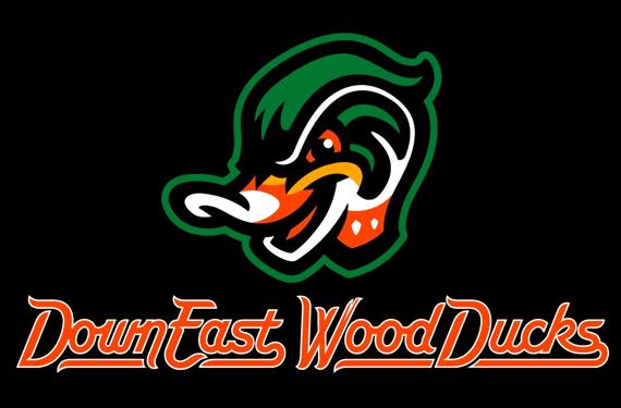 Down-East-Wood-Ducks-Logo_1556943381654.png