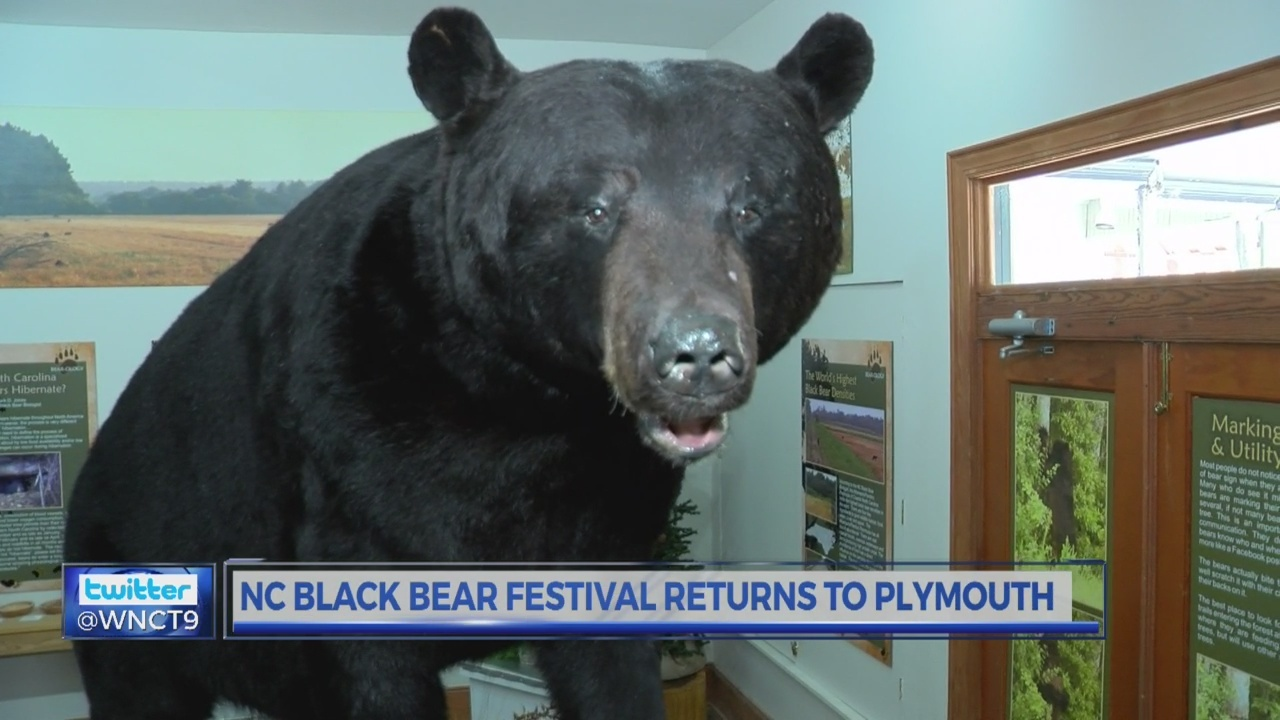 People and Places: N.C. Black Bear Festival returns to Plymouth