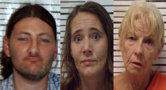 Three charged with drug trafficking after drug bust in
