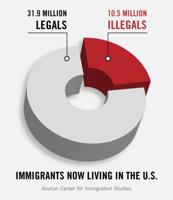 legals illegals in pie chart