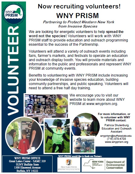 Volunteer Call-Out 2015
