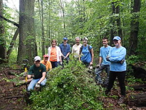 WNY PRISM and volunteers pulled multi-flora rose and japanese barberry from Franklin Gulf during ISAW 2017. Photo Credit: WNY PRISM