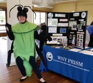 Project Manager, Lucy Nuessle, donned the EAB Costume for WNY PRISM at the 2017 Tifft Insectival. Photo Credit: WNY PRISM.