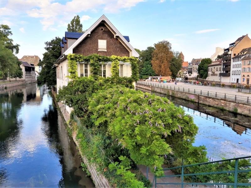 Straßburg mit Pflanzen
