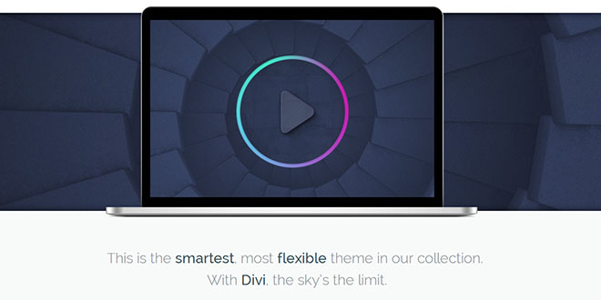 Divi Responsive WordPress Theme By Elegant Themes