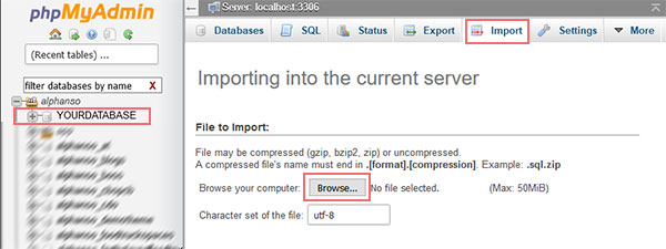 Importing Database How to Migrate Your WordPress Website to a New Web Host