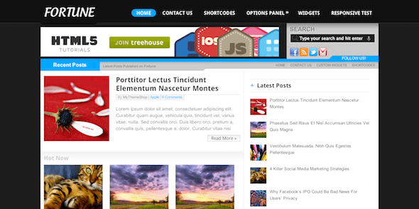 Fortune Best AdSense WordPress Themes for Earning More