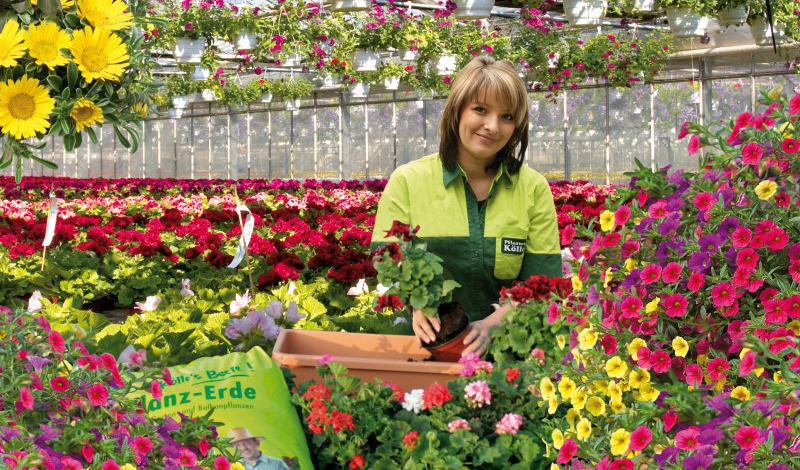 Teichtage Und Gratis Pflanzaktion Pflanzen Kölle Läutet Die