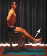 musculation-avec-une-bande-élastique