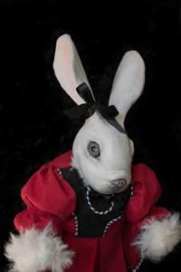 Portrait: rabbit in scarlet frock