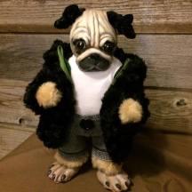 Pug in Black Hoodie
