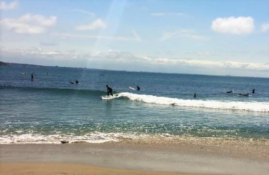 malibu-surfer