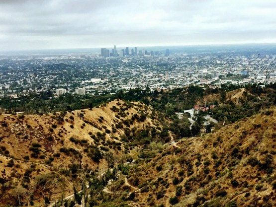 hike zum hollywood shild (5)