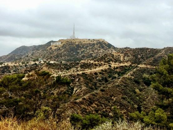 hike zum hollywood shild (6)