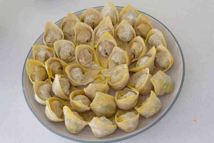 Wrapped wontons