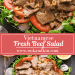 Two Vietnamese Beef Salads on plates.