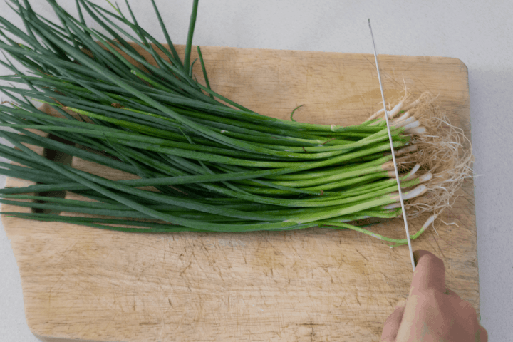 A knife cutting into scallion roots.