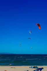 And the Wolf even managed to get some gear and squeeze in a session. That's him on the orange North kite.