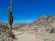 The dramatic Baja landscape