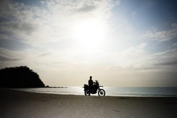 A Wolf silhouette on a pristine beach in Costa Rica