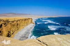 The amazing coastline of the Paracas National Parc