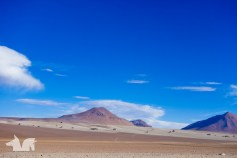 The Dali desert - named for it's striking resemblance to the landscapes painted by the surrealist artist