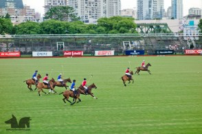 To the Zebra's delight we found a polo game to watch in the city.