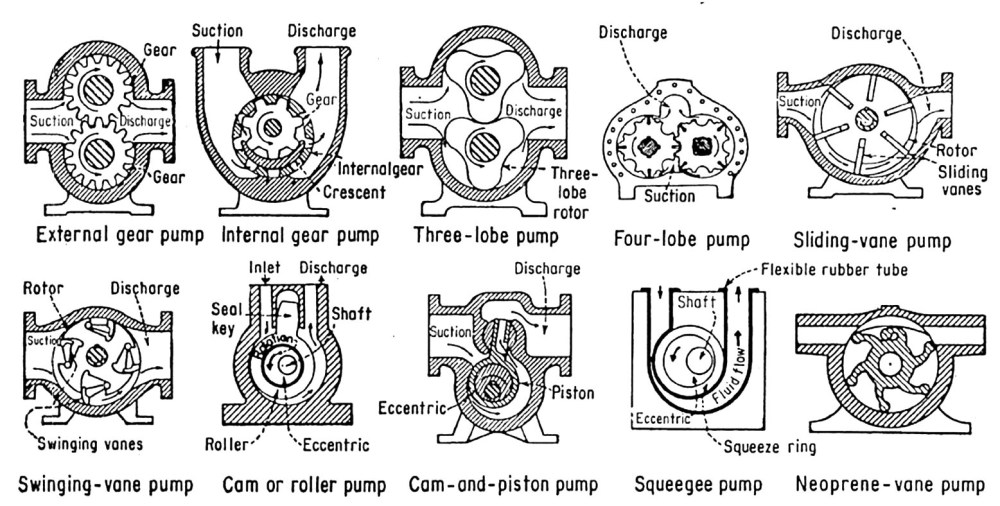 medium resolution of during each revolution of the shaft a constant volume of fluid is delivered to the pump s internal compartment and then exits through the discharge pipe