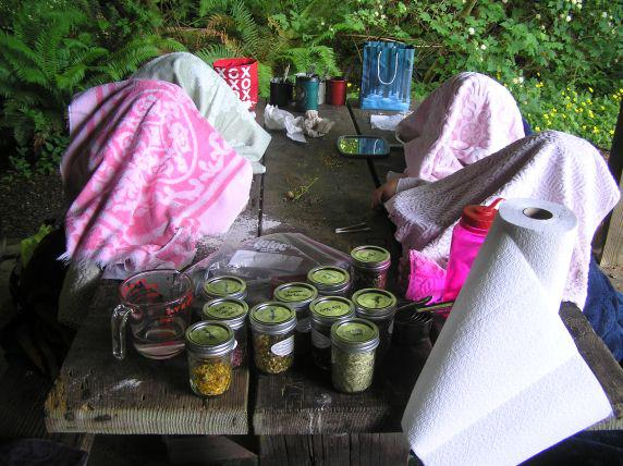 Chefs and Herbology Day Camp enjoying Facial Steam