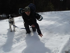 Tracking-Wolf-in-Snow
