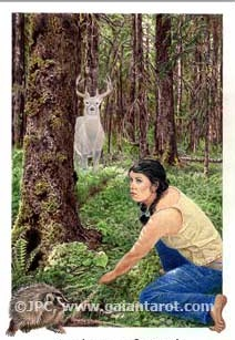 Explorer of Earth by Joanna Colbert and used with permission for the Wolf College