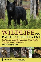 Day 22: Intro to Animal Tracking, Wildlife Safety & Awareness Skills