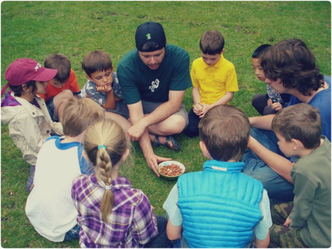 How to Involve Kids in Herbal Education