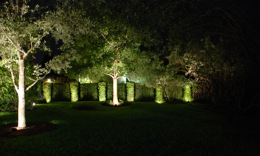 outdoor alliance lights wolf creek