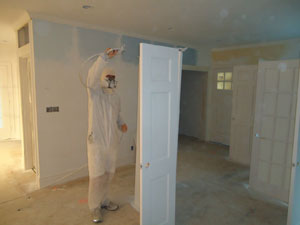 Specialty Painting Services Eco Friendly Wolfe