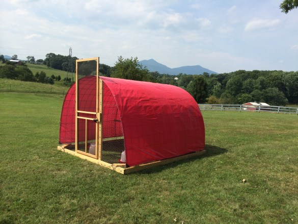 Hen Hoop House with Red Tarp