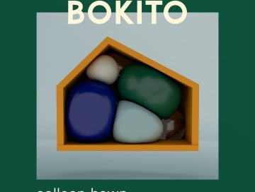 colleen bawn - by - bokito - Ireland - UK - London - indie music - new music - indie rock - music blog - indie blog - wolf in a suit - wolfinasuit - wolf in a suit blog - wolf in a suit music blog