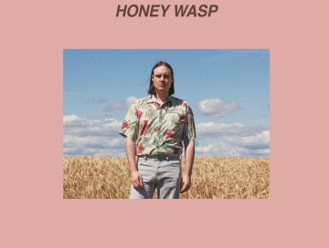 honey wasp - pikes - Sweden - indie music - indie pop - indie rock - new music - music blog - wolf in a suit - wolfinasuit - wolf in a suit blog - wolf in a suit music blog