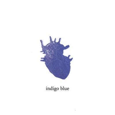 indigo blue - sean christopher - Netherlands - indie - indie music - indie pop - indie folk - new music - music blog - wolf in a suit - wolfinasuit - wolf in a suit blog - wolf in a suit music blog
